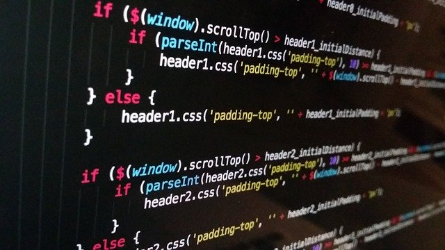 プログラミング 独学 学校 就職